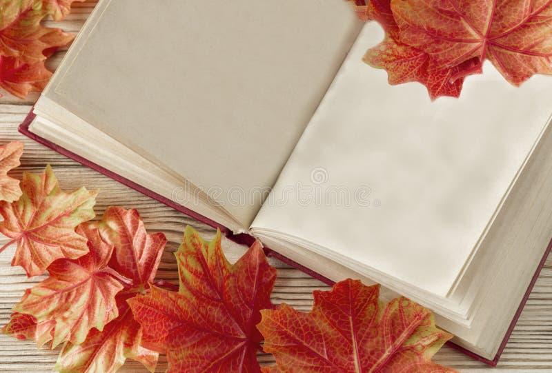 Het open boek met oude blanco pagina's als exemplaarruimte en herfst gevallen gaat weg royalty-vrije stock fotografie
