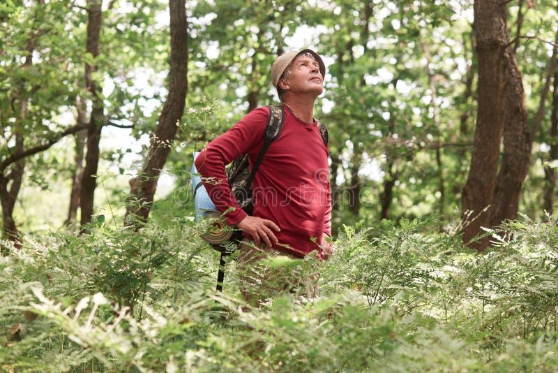Het openluchtschot van de reizen van de elderymens met het bos van de rugzaktrog, backpacker gaat langs weg langs hout, binnen he stock foto