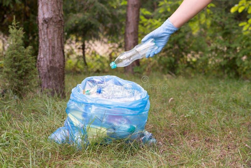 Het opnemen van afval en het zetten van het in een vuilniszak stock foto