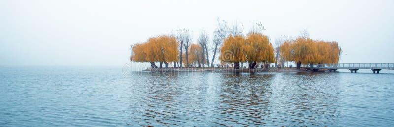 Het opwekken van charmant herfst minimalistic landschap met een eiland van gele bomen in het midden van een meer in een nevelige  royalty-vrije stock fotografie