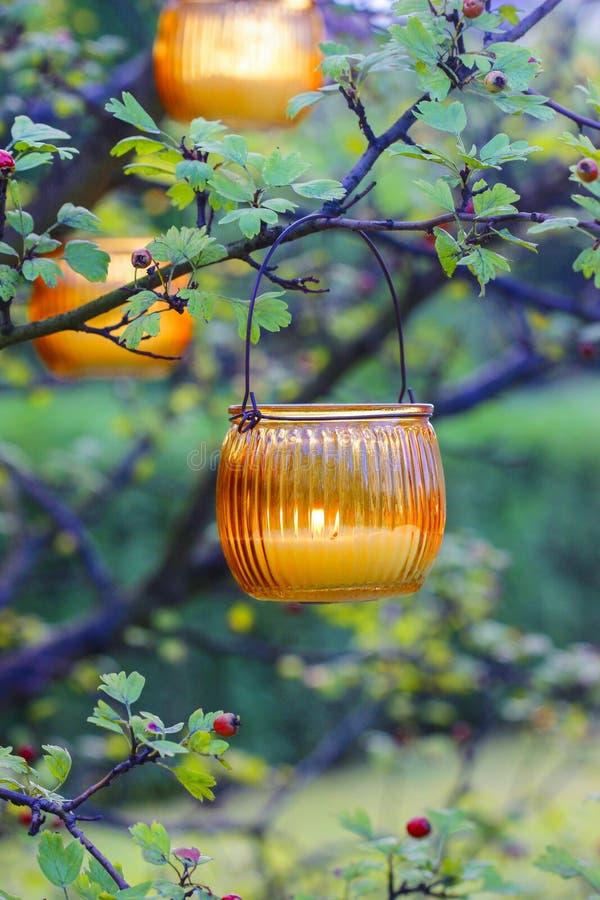 Het oranje lantaarn hangen op haagdoorntak stock fotografie