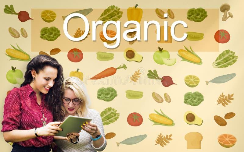 Het organische Concept van de de Ingrediëntenlandbouw van de Voedingsaard royalty-vrije stock foto