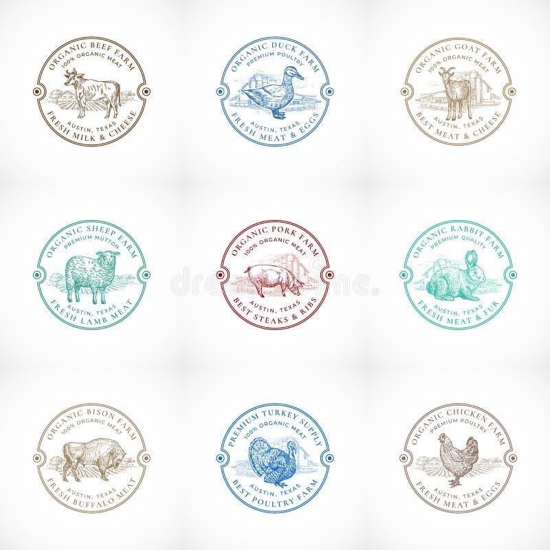 Het organische Vee en Gevogeltelandbouwbedrijf ontwierp Retro Kentekens of Logo Templates Set Hand Getrokken Huisdieren en Landbo royalty-vrije illustratie
