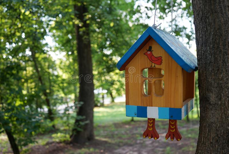 Het originele huis voor vogels op een boomtak in het stadspark stock fotografie