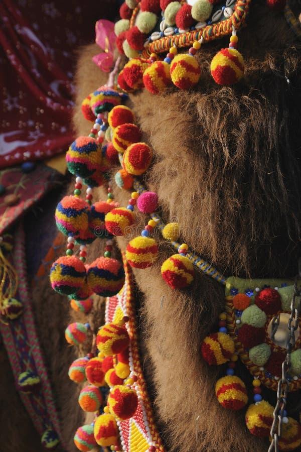 Het ornament van de kameel stock foto