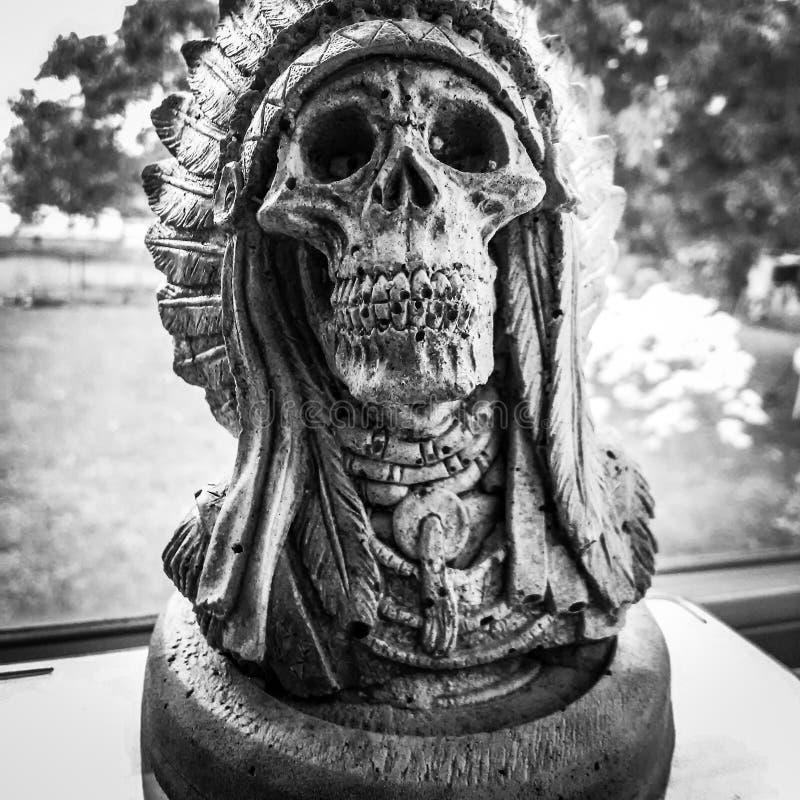 Het ornament van de schedeltuin stock afbeeldingen