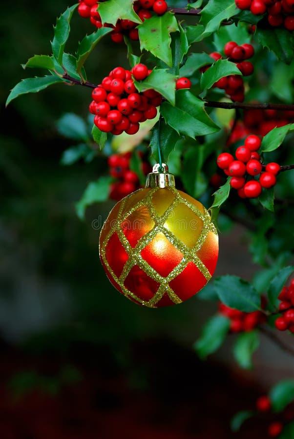 Het Ornament van Kerstmis van de Bessen van de hulst royalty-vrije stock afbeelding