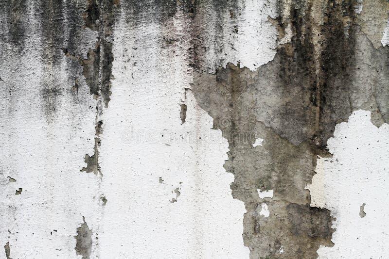 Het oude beton van de muur witte kleur royalty-vrije stock afbeelding