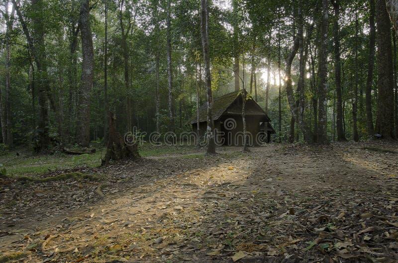 Het oude plattelandshuisje in geheimzinnigheid bos royalty-vrije stock fotografie