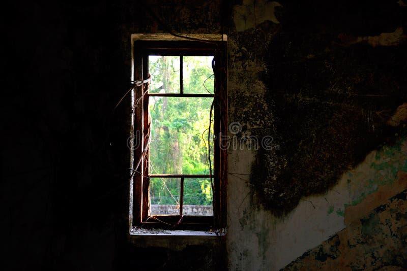 Het oude schadevenster met banyan tert in een donkere ruimte toe stock foto's