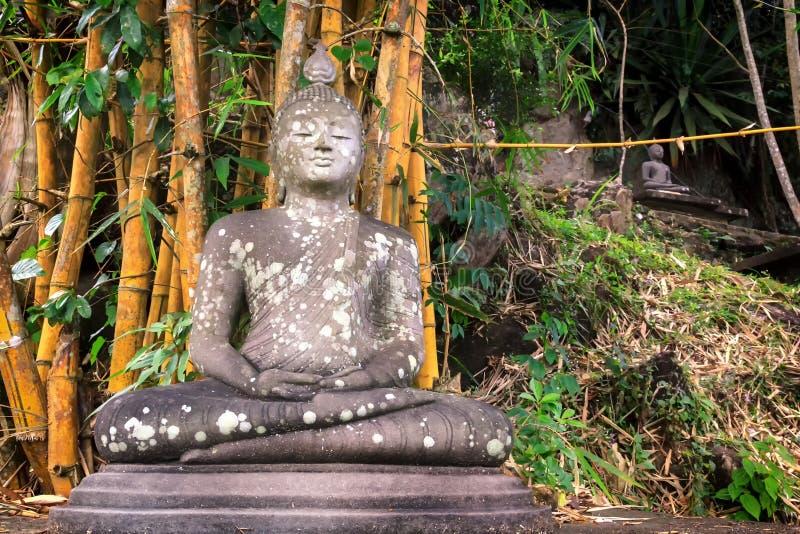 Het oude standbeeld van Boedha in meditatie onder een regenwoud stock foto's