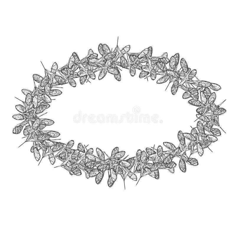 Het ovale grijze kader van klaverzaden vector illustratie