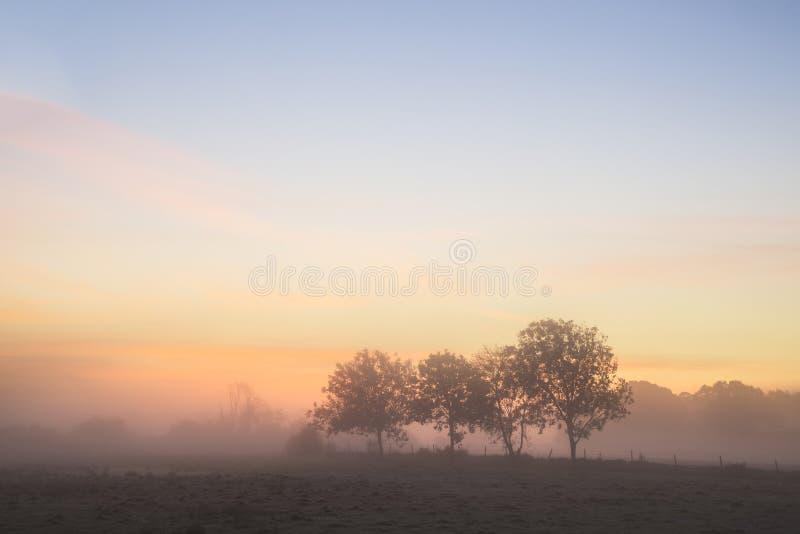 Het overweldigen van het trillende Engelse platteland van de de Herfst mistige zonsopgang landsc stock afbeelding