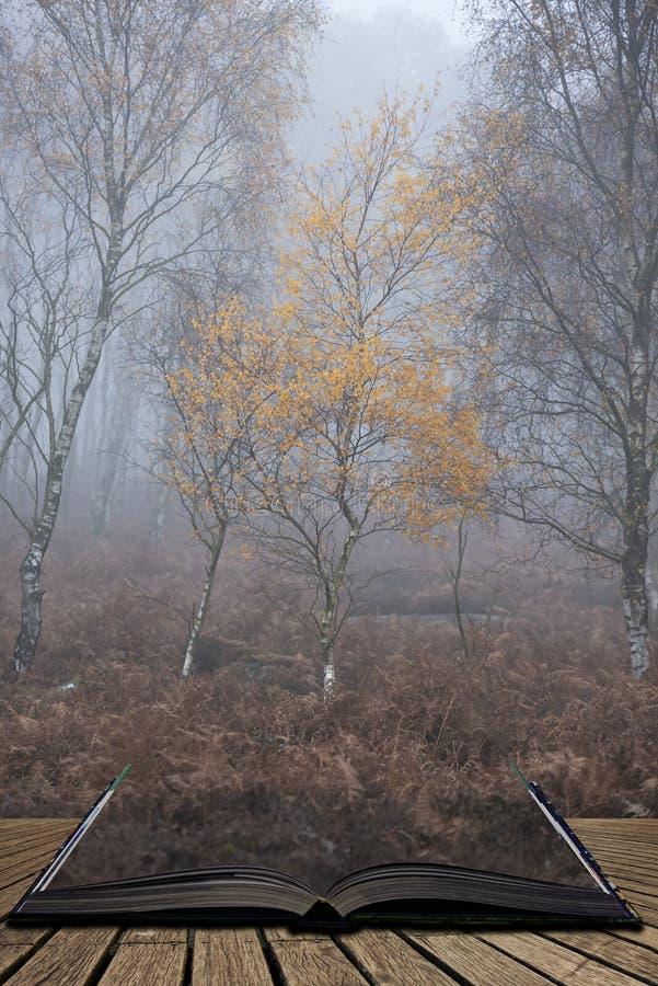 Het overweldigen van kleurrijk Autumn Fall-landschap in mistig Piekdistrict in Engeland die uit pagina's in magisch verhaalboek k stock foto