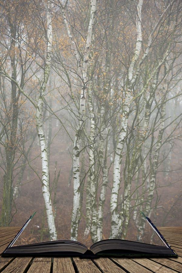 Het overweldigen van kleurrijk Autumn Fall-landschap in mistig Piekdistrict in Engeland die uit pagina's in magisch verhaalboek k stock fotografie