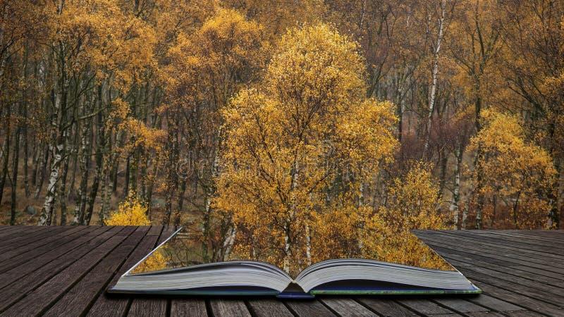 Het overweldigen van kleurrijk Autumn Fall-landschap in mistig Piekdistrict in Engeland die uit pagina's in magisch verhaalboek k stock foto's