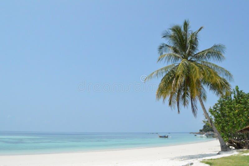 Het overweldigen van mooi Pattaya-strand Koh Lipe Thailand stock afbeelding