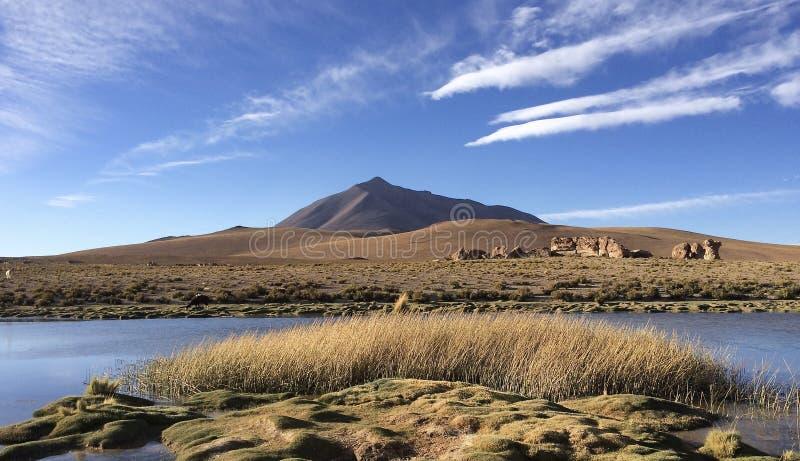 Het overweldigen van open vlakte met vulkaan op achtergrond, zuidelijk Bolivië royalty-vrije stock afbeelding