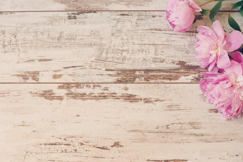 Het overweldigen van roze pioenen op witte lichte rustieke houten achtergrond Exemplaar ruimte, bloemenkader Wijnoogst, nevel het royalty-vrije stock foto's