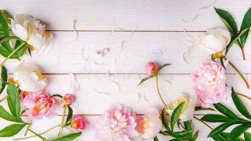 Het overweldigen van roze pioenen op witte rustieke houten achtergrond De ruimte van het exemplaar stock foto