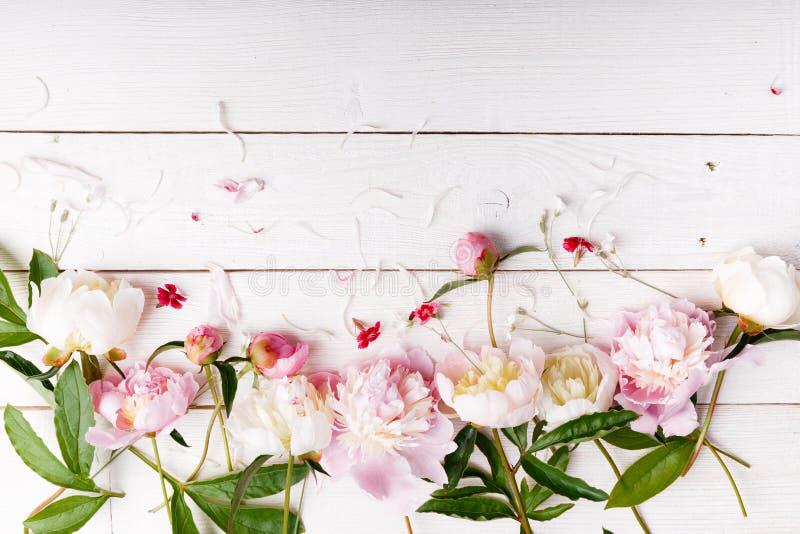Het overweldigen van roze pioenen op witte rustieke houten achtergrond De ruimte van het exemplaar royalty-vrije stock fotografie