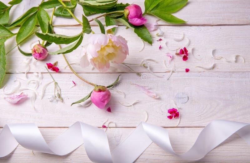 Het overweldigen van roze pioenen op witte rustieke houten achtergrond De ruimte van het exemplaar stock fotografie