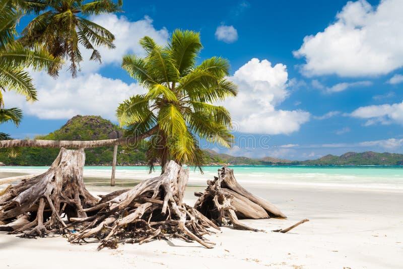Het overweldigen van Tropisch Strand in de Seychellen royalty-vrije stock fotografie