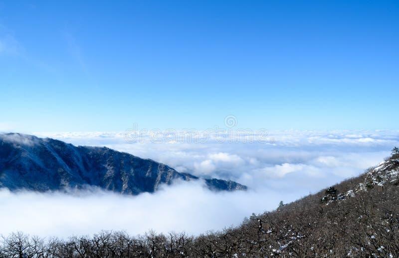 Het overzees van wolken 2 stock foto