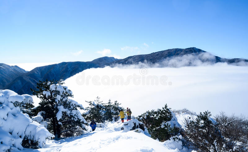 Het overzees van wolken 3 stock afbeelding