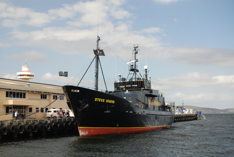 Het overzeese schip Steve Irwin van de Herder stock fotografie