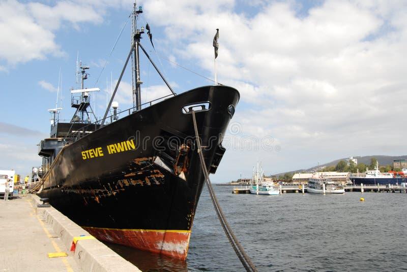 Het overzeese schip Steve Irwin van de Herder royalty-vrije stock fotografie