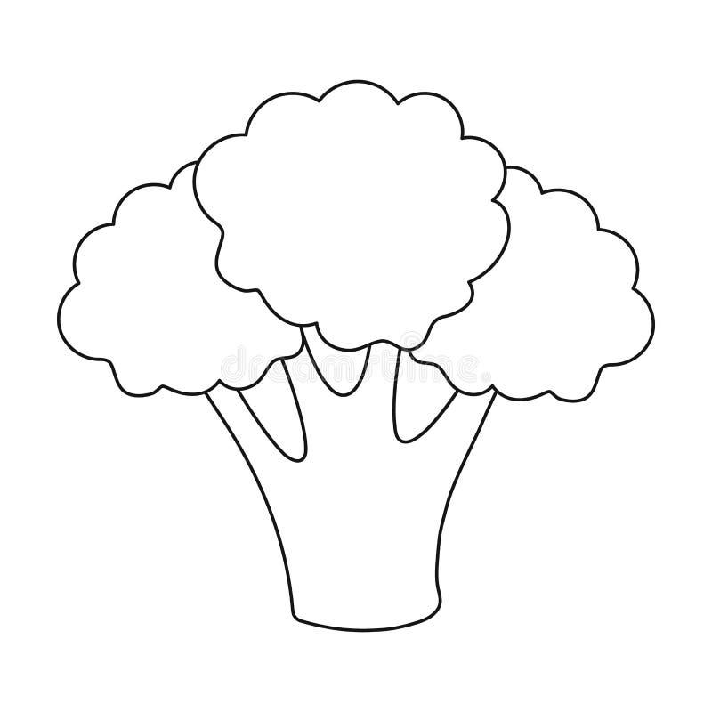 Het overzicht van het broccolipictogram Het pictogram van schroeiplekgroenten van het overzicht van het ecovoedsel vector illustratie