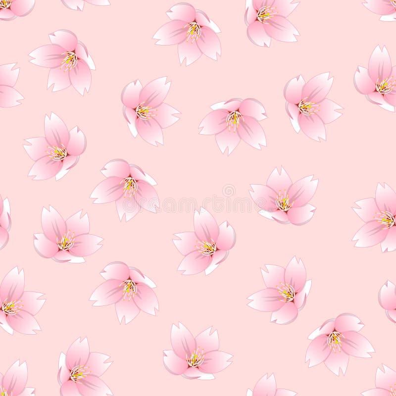 Het Overzicht van Prunusserrulata - Kersenbloesem, Sakura op Roze Achtergrond Vector illustratie vector illustratie