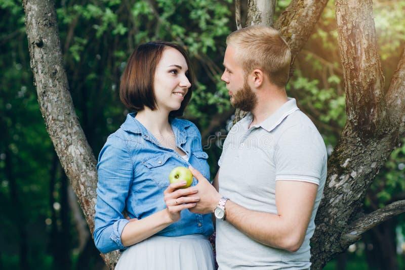 Het paar in liefde heeft een rust in de boomgaard van de zomerapple stock foto's