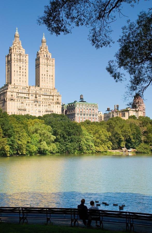 Het Paar van het Central Park royalty-vrije stock foto's