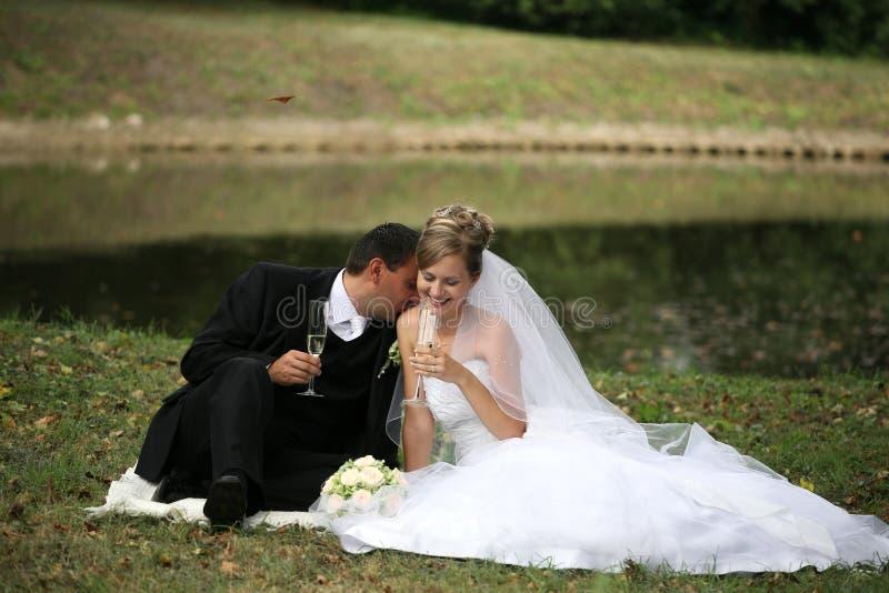 Download Het paar van het huwelijk stock foto. Afbeelding bestaande uit gouden - 11006588