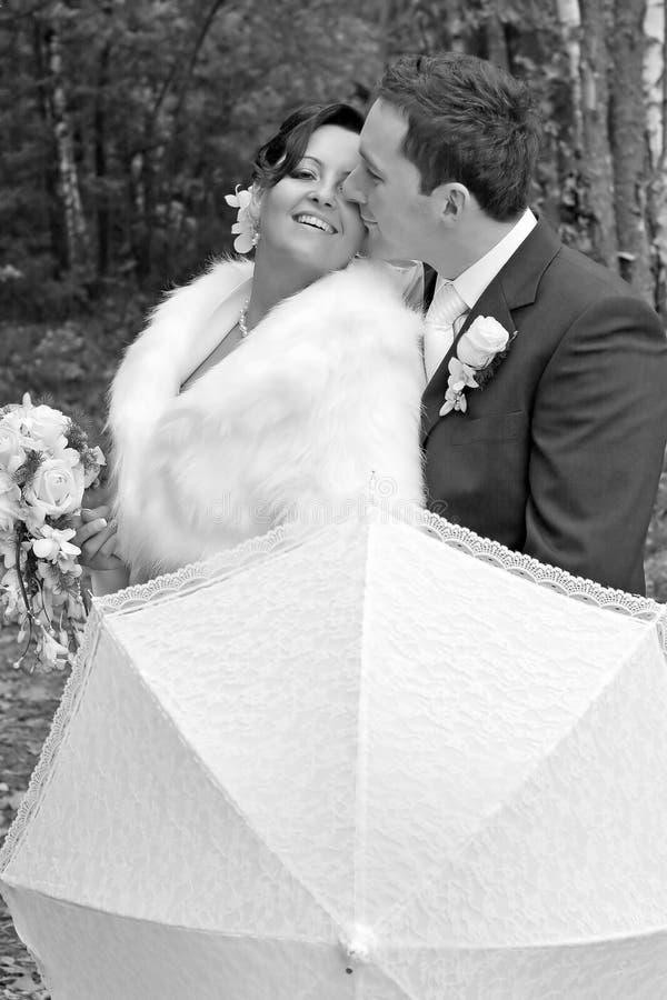 Het paar van het huwelijk royalty-vrije stock afbeelding