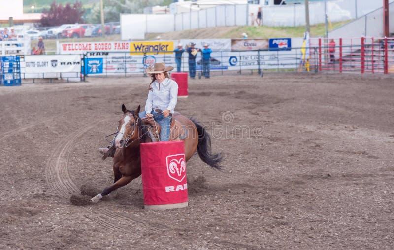 Het paard en de ruiter snijden rond het tweede vat bij de vat het rennen concurrentie stock afbeelding