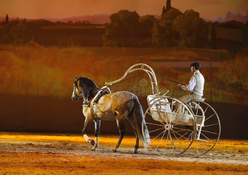 Het Paard van Apassionata toont 2013 stock afbeelding