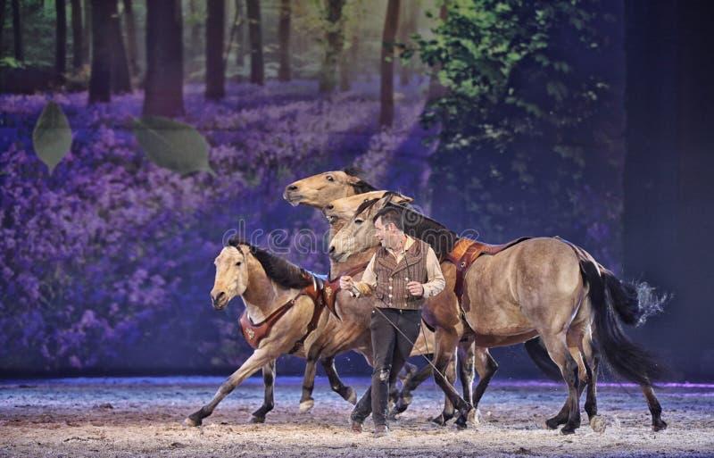 Het Paard van Apassionata toont 2013 royalty-vrije stock afbeeldingen