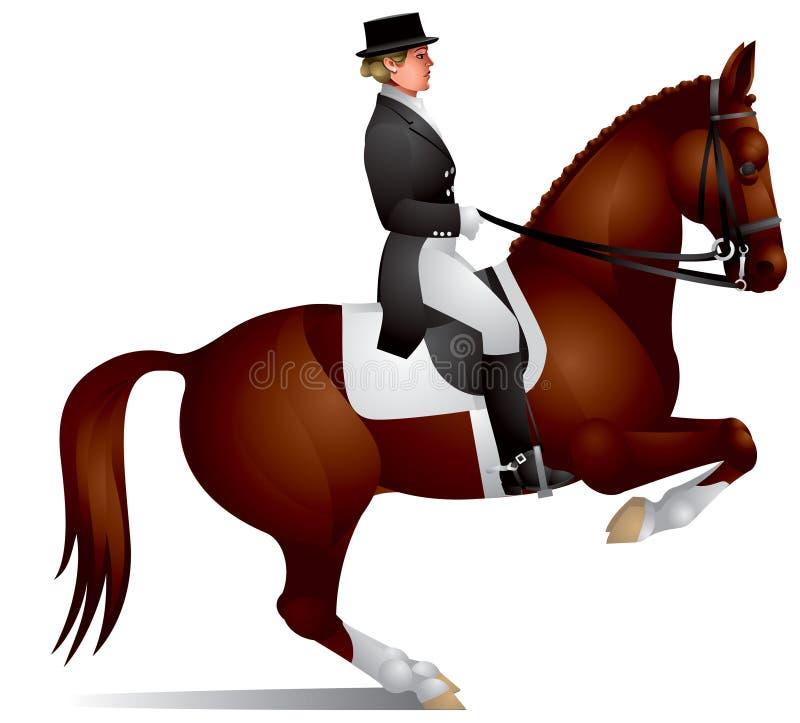 Het paard van de dressuur voert cijferlevada uit stock illustratie