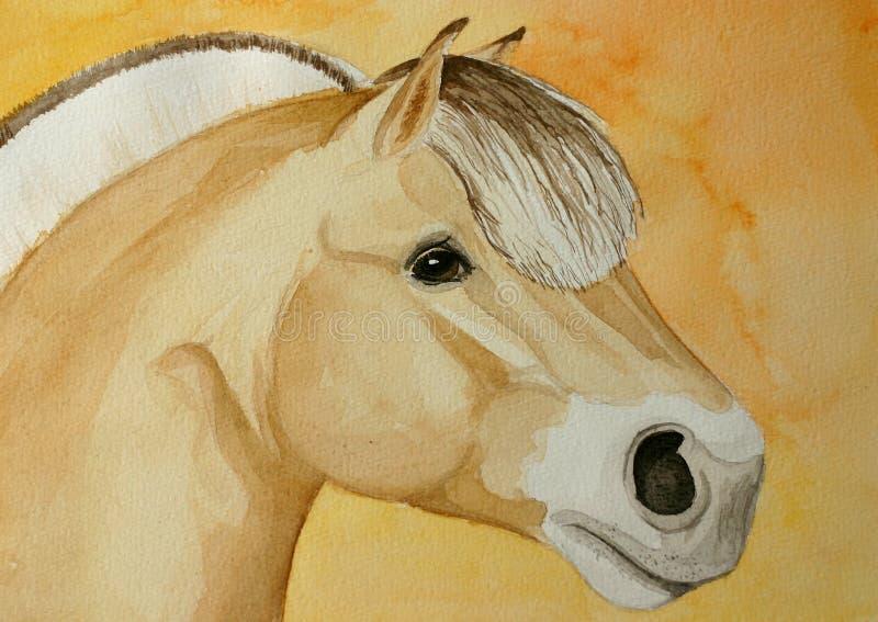 Het paard van de fjord het schilderen stock illustratie