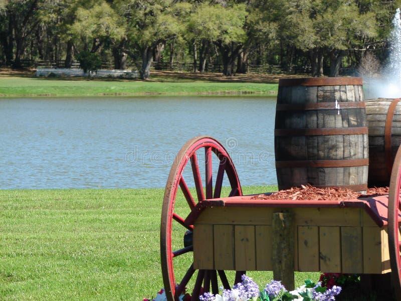 Het paardlandbouwbedrijf van Florida royalty-vrije stock afbeeldingen