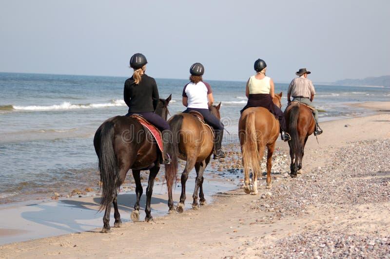 Het paardrijden van het strand stock afbeeldingen