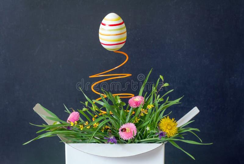 Het paasei en de lente bloeien weide in het abstracte unieke concept van de doosverrassing stock afbeeldingen