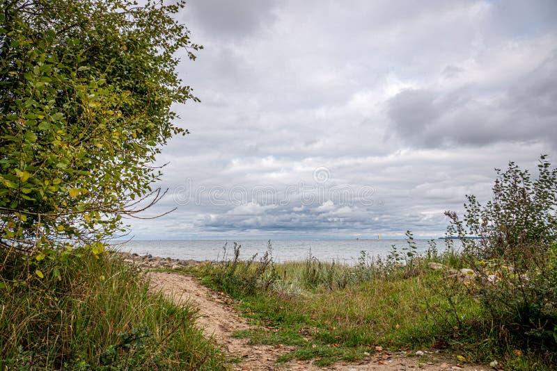 Het pad leidt naar de baai van Travemünde in troebel najaar royalty-vrije stock foto's