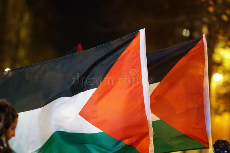 Het Palestijnse vlag fladderen stock foto's