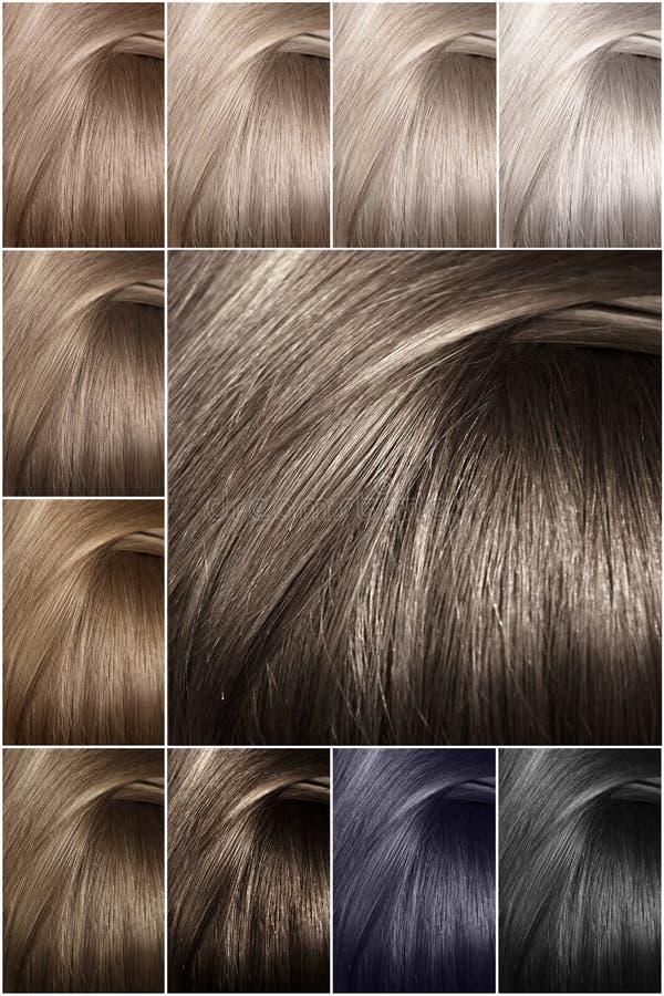 Het palet van de haarkleur met een brede waaier van steekproeven Steekproeven van gekleurde haarkleuren Schaduwen van koude kleur stock afbeeldingen