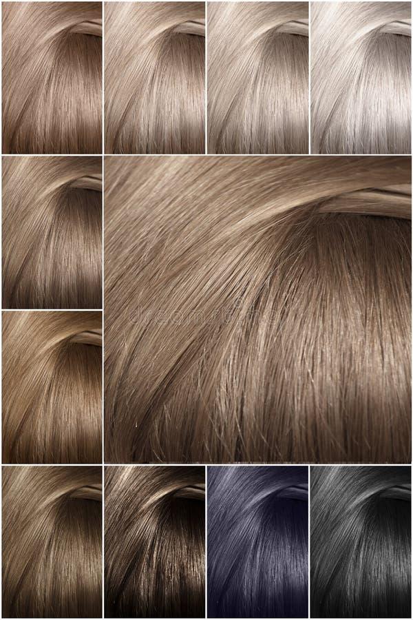 Het palet van de haarkleur met een brede waaier van steekproeven Steekproeven van gekleurde haarkleuren Schaduwen van koude kleur stock fotografie