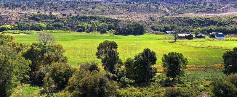 Het panorama bosmeningen die van de de recente Zomer vroege Daling, het biking, horseback slepen door bomen langs Weg 40 dichtbij royalty-vrije stock fotografie